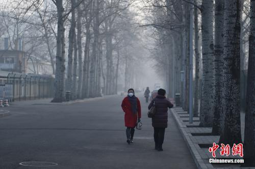 资料图:北京街头。中新网记者 金硕 摄