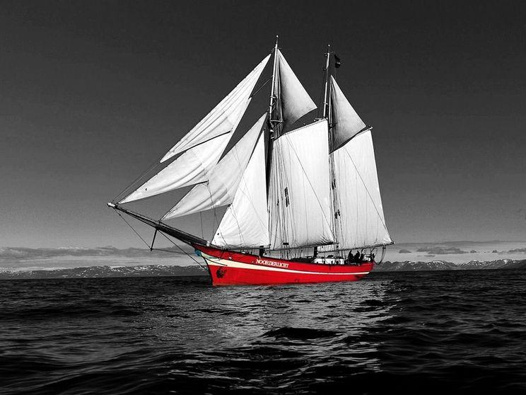 帆船背景矢量图